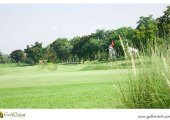 Wangnoi-Prestige-Golf-Country-Club-3