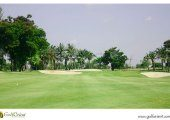 Wangnoi-Prestige-Golf-Country-Club-4